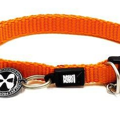 Obojky MAX and MOLLY obojek CAT - ORANGE - 1cm/22-35cm