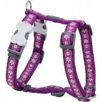 Vodítka Postroj RD DAISY chain PURPLE - 12mm/30-44cm