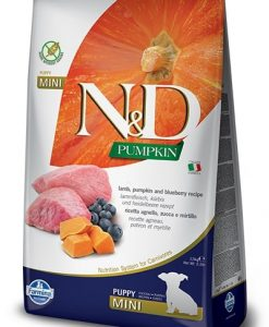 Granule pro psy N&D dog GF PUMPKIN PUPPY MINI lamb/blueberry - 2